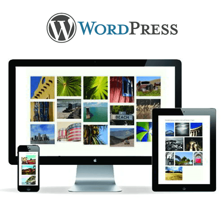 Wordpress Developers India